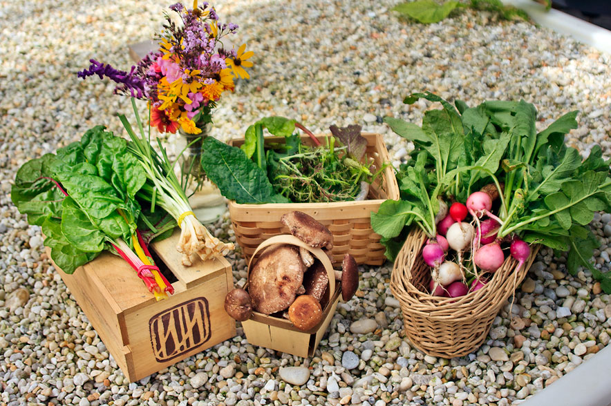 vegetables sfw - Metanoia
